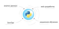 Почему программисты используют Python